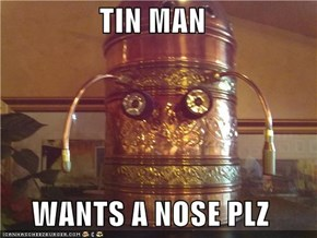 TIN MAN  WANTS A NOSE PLZ