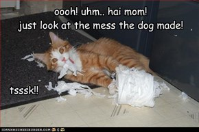 oooh! uhm.. hai mom!   just look at the mess the dog made!