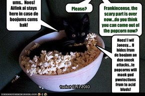 Frankincense, the scary part is over now...do you think you can come out of the popcorn now?