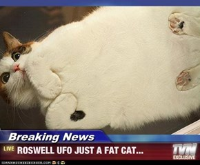 Breaking News - ROSWELL UFO JUST A FAT CAT...