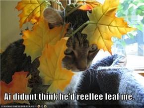 Ai didunt think he'd reellee leaf me.