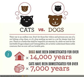 Cats vs. Dogs: An Infographic