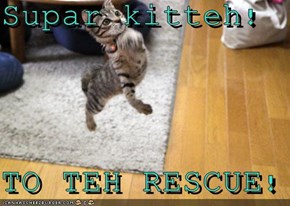 Supar kitteh!  TO TEH RESCUE!