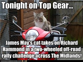 Tonight on Top Gear...