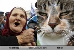 fat old lady Totally Looks Like fat cat