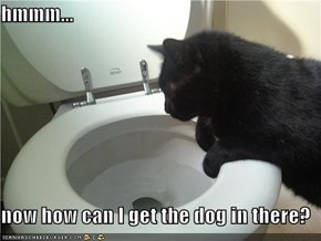 hmmm...  now how can I get the dog in there?