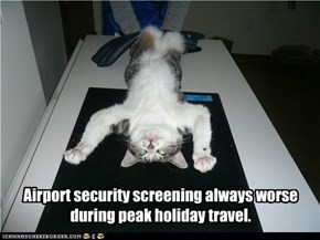 Airport security screening always worse  during peak holiday travel.