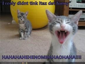 """""""I reely didnt tink itaz dat funny""""  HAHAHAHEHENOMHAHAOHAHA!!!!"""