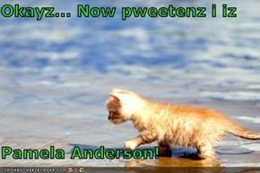Okayz... Now pweetenz i iz  Pamela Anderson!