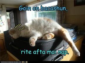 Goin on bacashun,