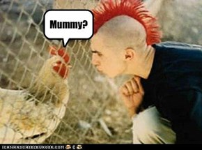 one funny lokkin chicken!