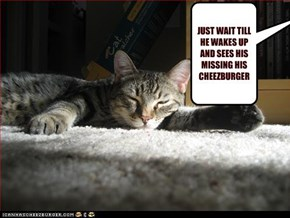 JUST WAIT TILL HE WAKES UP AND SEES HIS MISSING HIS CHEEZBURGER