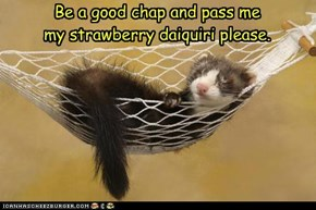 Be a good chap and pass me my strawberry daiquiri please.