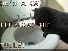 HE'S A CAT FLUSHING THE  TOILET