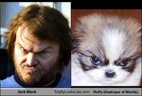 Jack Black Totally Looks Like Fluffy (Destroyer of Worlds)