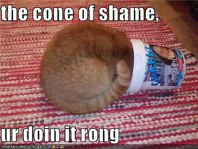 the cone of shame,  ur doin it rong