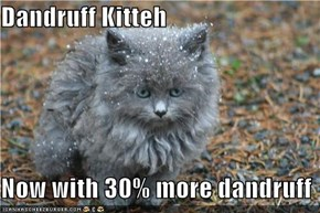 Dandruff Kitteh  Now with 30% more dandruff