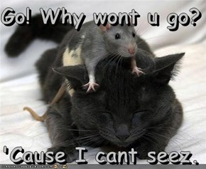 Go! Why wont u go?  'Cause I cant seez.