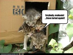 Evrybudy, evakuate! ...Steve farted again!!