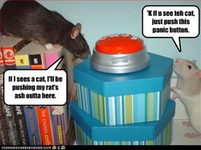 'K if u see teh cat, just push this panic button.