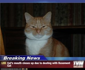 Breaking News - Cat's mouth closes up due to dealing with Basement Cat