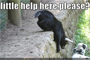 little help here please?