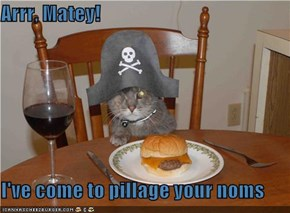 Arrr, Matey!  I've come to pillage your noms