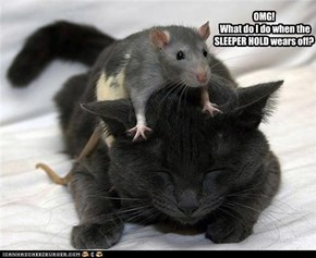 OMG!  What do I do when the SLEEPER HOLD wears off?