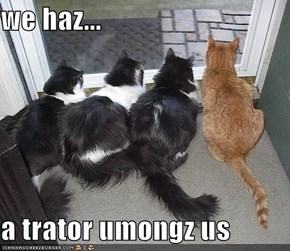 we haz...  a trator umongz us