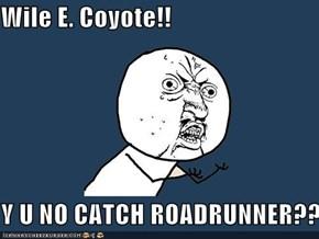 Wile E. Coyote!!  Y U NO CATCH ROADRUNNER??