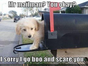 Mr mailman? You okay?  I sorry I go boo and scare you.