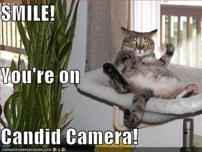 SMILE! You're on Candid Camera!