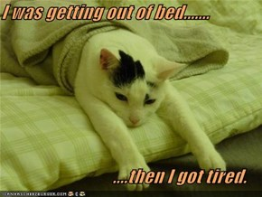 I was getting out of bed.......                                 ....then I got tired.