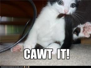 CAWT  IT!