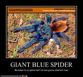 GIANT BLUE SPIDER