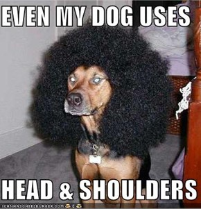 EVEN MY DOG USES  HEAD & SHOULDERS