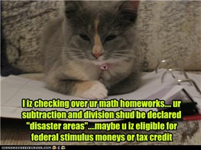 "I iz checking over ur math homeworks.... ur subtraction and division shud be declared ""disaster areas""....maybe u iz eligible for federal stimulus moneys or tax credit"