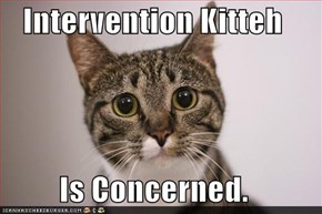 Intervention Kitteh  Is Concerned.