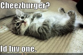 Cheezburger?  Id luv one.