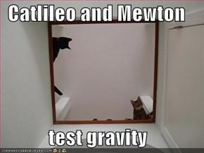 Catlileo and Mewton  test gravity