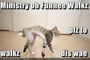 Ministry ob Funnee Walkz plz to     walkz                          dis wae