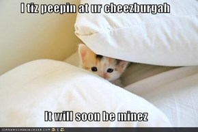 I tiz peepin at ur cheezburgah  It will soon be minez