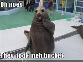 Oh noes  They  took meh bucket