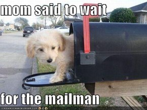 mom said to wait   for the mailman
