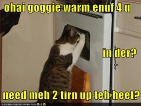 ohai goggie warm enuf 4 u  in der?     need meh 2 tirn up teh heet?