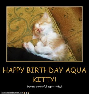 HAPPY BIRTHDAY AQUA KITTY!