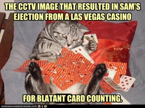 THE CCTV IMAGE THAT RESULTED IN SAM'S EJECTION FROM A LAS VEGAS CASINO         FOR BLATANT CARD COUNTING.