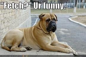 """""""Fetch?"""" Ur funny."""