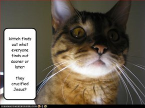 kitteh finds out what everyone finds out sooner or later:  they crucified Jesus?