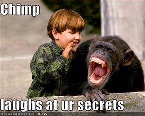 Chimp   laughs at ur secrets